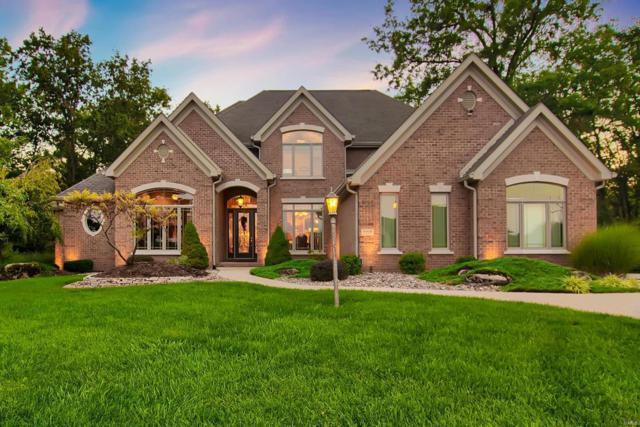 8404 Rock Ridge Court, Edwardsville, IL 62025 (#17069913) :: Sue Martin Team