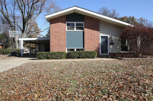 464 Buena Vista Street, Edwardsville, IL 62025 (#18090852) :: Kelly Hager Group | TdD Premier Real Estate
