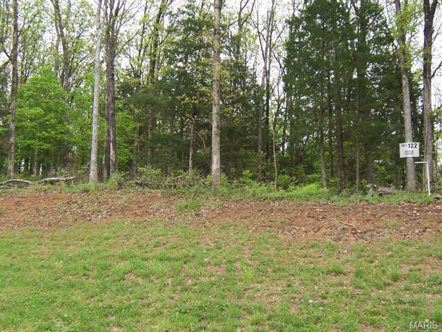 1610 Boyce Lane, Festus, MO 63028 (#15033310) :: Walker Real Estate Team