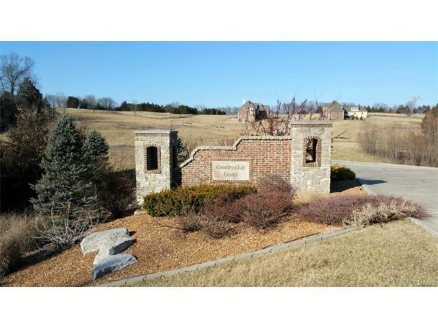 892 Bellerive Place, Washington, MO 63090 (#16053444) :: Holden Realty Group - RE/MAX Preferred