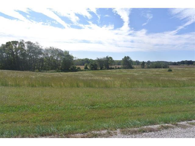 0 Tyler Road, Perryville, MO 63775 (#16068337) :: Sue Martin Team
