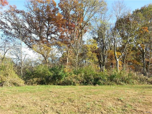 0 Oak Ridge Drive 9 & 10, Roxana, IL 62084 (#17002101) :: Sue Martin Team