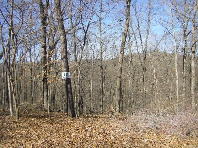 10 Old Logging Road #10, Eureka, MO 63025 (#17002490) :: Holden Realty Group - RE/MAX Preferred