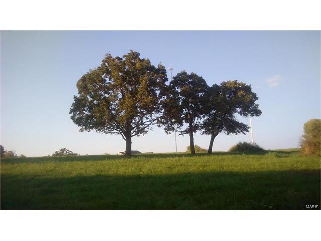 101 Lot #1 Park Ridge Estates, Freeburg, MO 65035 (#17012526) :: Sue Martin Team