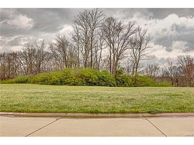 1356 Lantern Lights Circle, Lebanon, IL 62254 (#17025862) :: St. Louis Finest Homes Realty Group