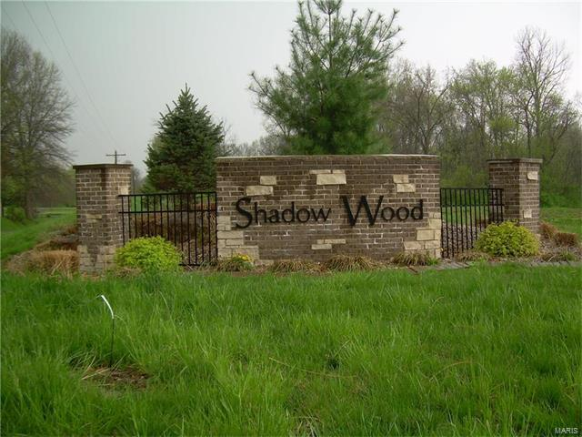 8943 Wheat Drive, Troy, IL 62294 (#17028949) :: PalmerHouse Properties LLC