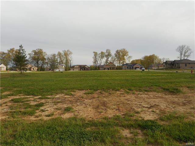 1414 Crimson King Way, Troy, IL 62294 (#17031102) :: PalmerHouse Properties LLC