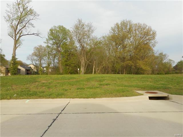 8827 Wheat Drive, Troy, IL 62294 (#17031247) :: PalmerHouse Properties LLC