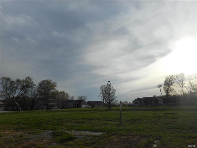 8831 Wheat Drive, Troy, IL 62294 (#17031253) :: PalmerHouse Properties LLC