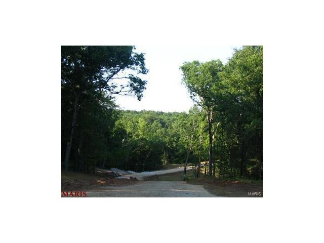 0 Lot #50 Bristol Ridge, Troy, MO 63379 (#17039356) :: Holden Realty Group - RE/MAX Preferred