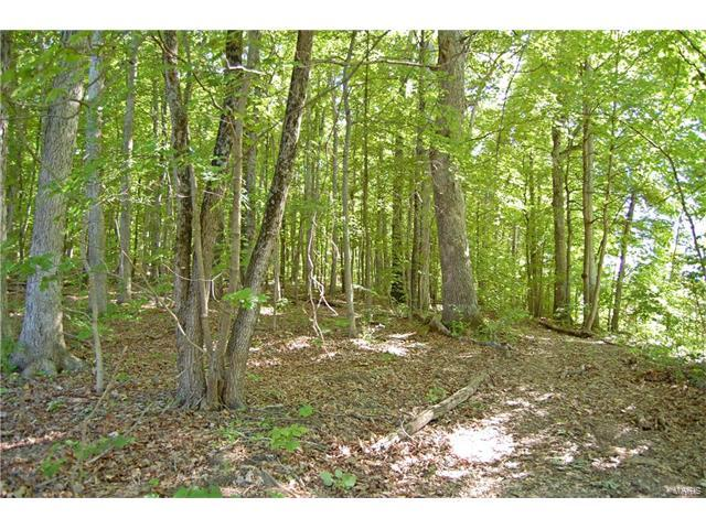 80 + Acres Off Hwy 30, House Springs, MO 63051 (#17043475) :: St. Louis Realty