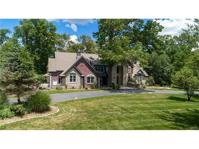 10 Overbrook Drive, Ladue, MO 63124 (#17048996) :: RE/MAX Vision