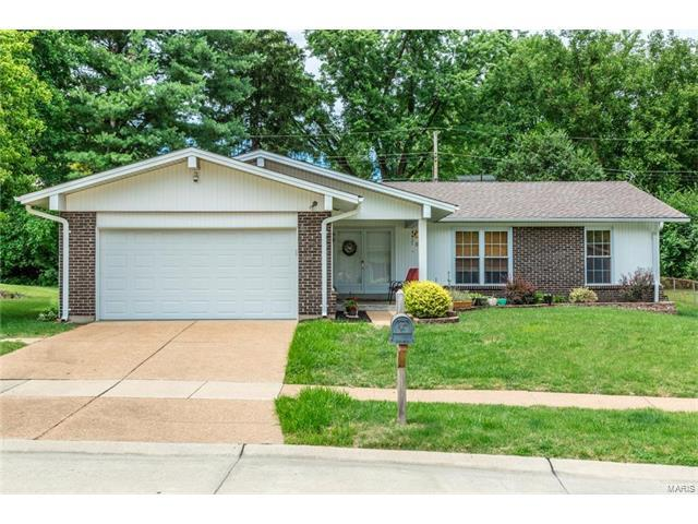 12733 Saddlemaker Court, Maryland Heights, MO 63043 (#17049555) :: RE/MAX Vision