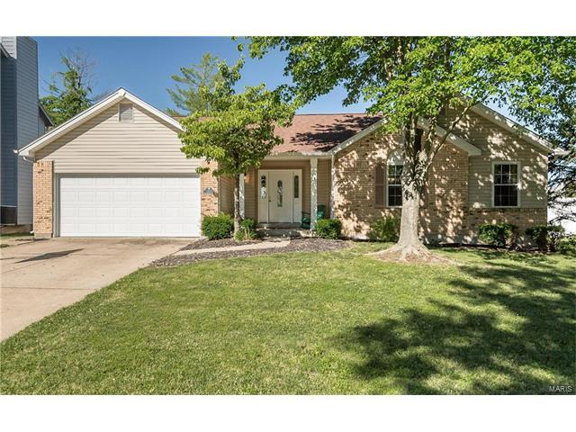 1111 Saddlebrook Court, Saint Charles, MO 63304 (#17049668) :: RE/MAX Vision