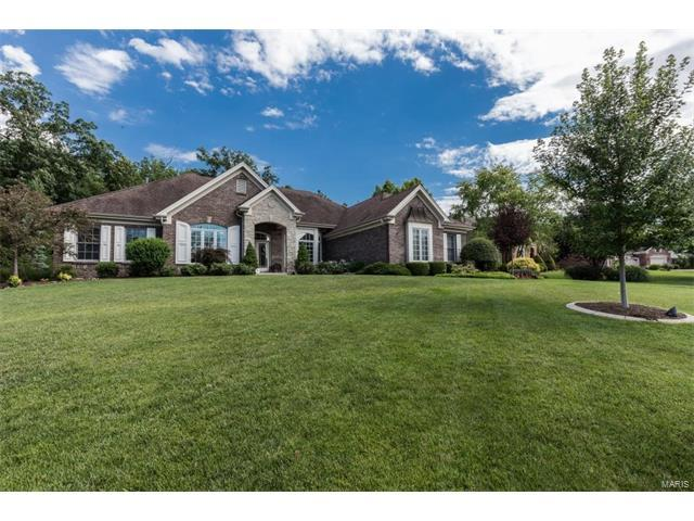 517 Forest Crest Court, Lake St Louis, MO 63367 (#17050180) :: Clarity Street Realty