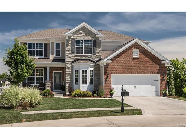 304 Chestnut Creek Circle, Dardenne Prairie, MO 63368 (#17050783) :: The Kathy Helbig Group