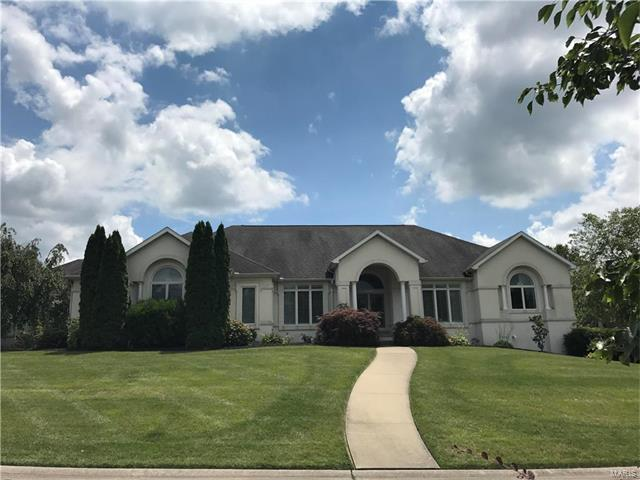 3429 Spring Lake Trail, Jackson, MO 63755 (#17053659) :: Carrington Real Estate Services