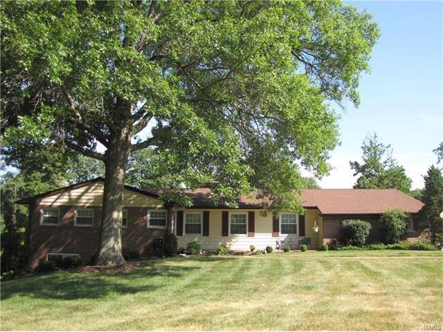 1209 Wilton Lane, Kirkwood, MO 63122 (#17056865) :: Gerard Realty Group