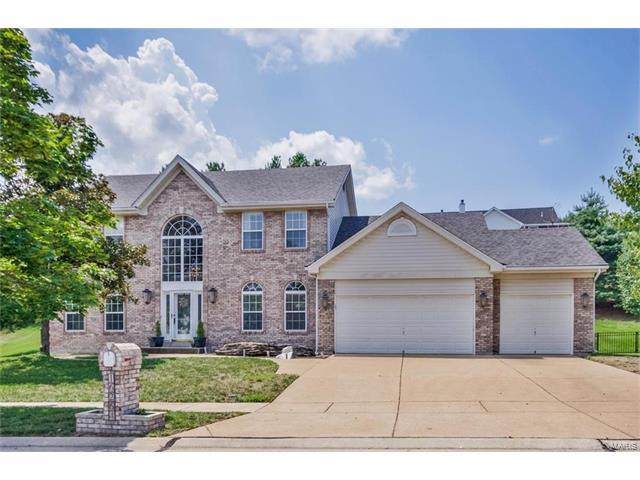16264 Autumn View Terrace Drive, Ellisville, MO 63011 (#17059365) :: The Becky O'Neill Power Home Selling Team