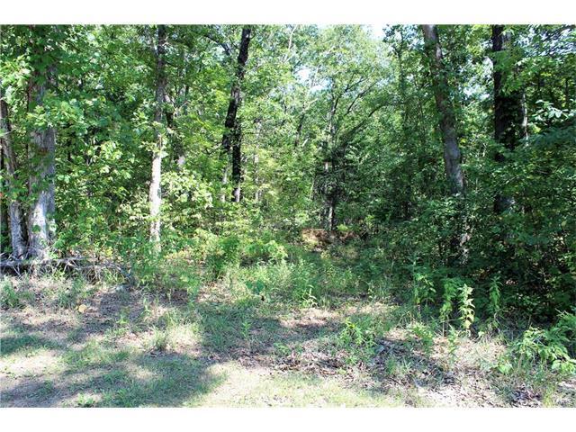 585 Huntington Trails Drive, Festus, MO 63028 (#17064181) :: Clarity Street Realty