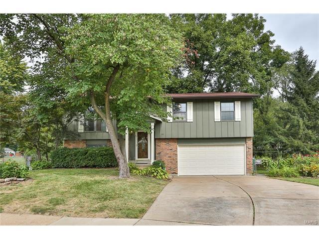 19 Cedar Park Drive, Florissant, MO 63031 (#17064857) :: Clarity Street Realty