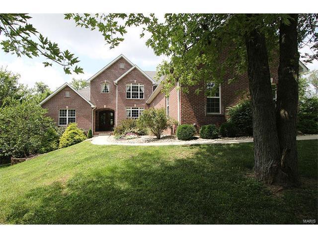 431 W Lake Drive, Edwardsville, IL 62025 (#17065038) :: Clarity Street Realty