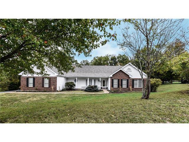 4099 Princeton Ridge Drive, Wildwood, MO 63025 (#17067904) :: The Kathy Helbig Group
