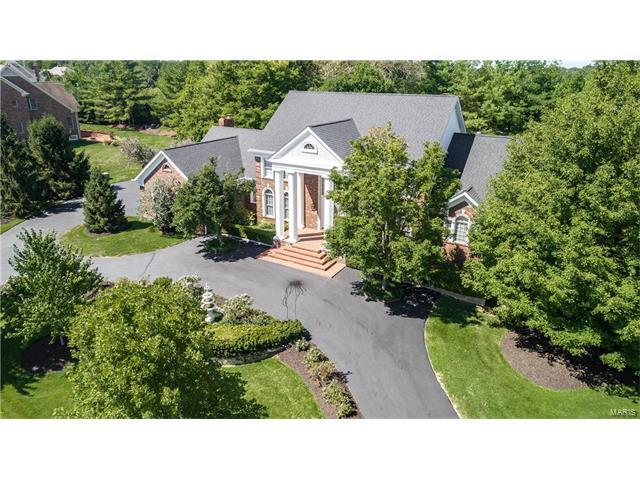701 The Hamptons Lane, Town and Country, MO 63017 (#17068680) :: Sue Martin Team