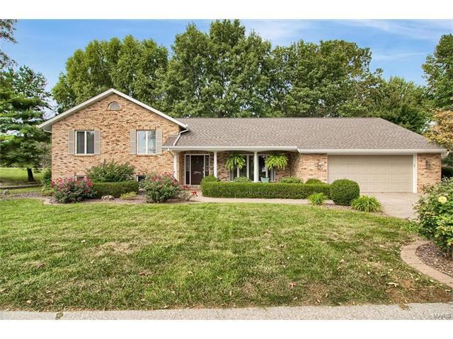 47 Waterford Lane, Glen Carbon, IL 62034 (#17069899) :: Fusion Realty, LLC