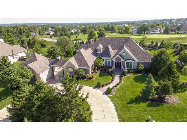 650 Grey Oaks Drive, Weldon Spring, MO 63304 (#17069983) :: The Kathy Helbig Group