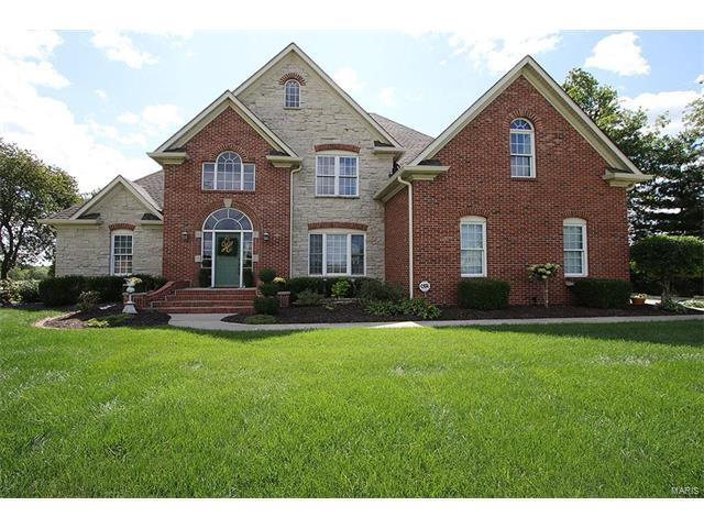 5342 Wild Oak Lane, Smithton, IL 62285 (#17070735) :: Clarity Street Realty