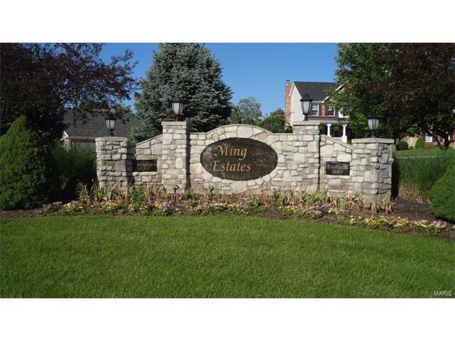 931 Prairie View Court, Washington, MO 63090 (#17071496) :: Sue Martin Team