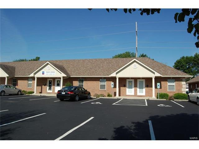 131 Lincoln Place #406, Belleville, IL 62221 (#17072993) :: Fusion Realty, LLC