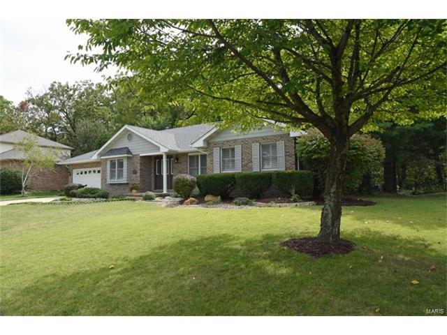 102 Springbrook Drive, Glen Carbon, IL 62034 (#17073696) :: Fusion Realty, LLC