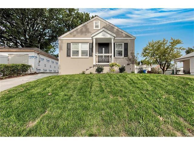 219 Runyon Avenue, St Louis, MO 63125 (#17074476) :: Fusion Realty, LLC