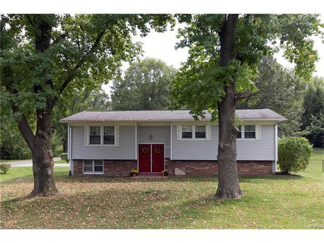 900 Holiday Pointe Parkway, Edwardsville, IL 62025 (#17074697) :: Fusion Realty, LLC