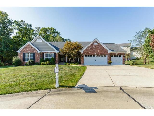 1032 Marions Cove Court, Lake St Louis, MO 63367 (#17074934) :: Kelly Hager Group | Keller Williams Realty Chesterfield