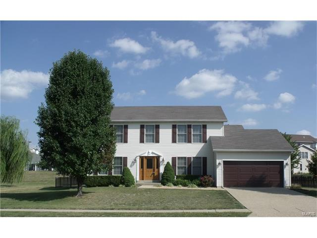 113 Eagles Landing, Shiloh, IL 62221 (#17075339) :: Fusion Realty, LLC
