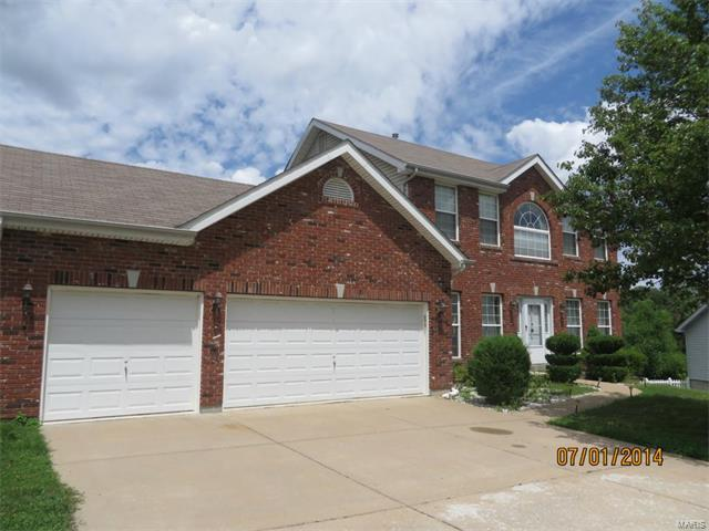 16281 Autumn View Terrace, Ellisville, MO 63011 (#17076736) :: The Becky O'Neill Power Home Selling Team