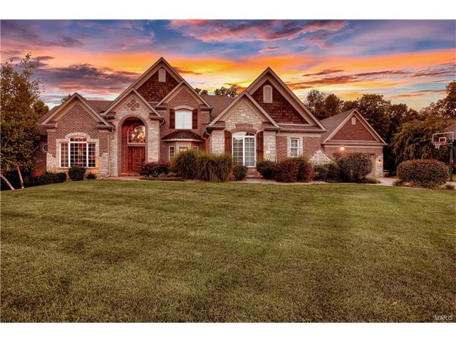 4459 Austin Meadows Court, Saint Charles, MO 63304 (#17077883) :: The Kathy Helbig Group