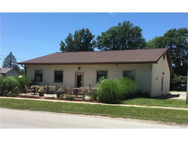 109 S Maple, MULBERRY GROVE, IL 62262 (#17078525) :: Sue Martin Team