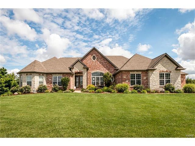 421 Brellinger Street, Columbia, IL 62236 (#17079135) :: Holden Realty Group - RE/MAX Preferred
