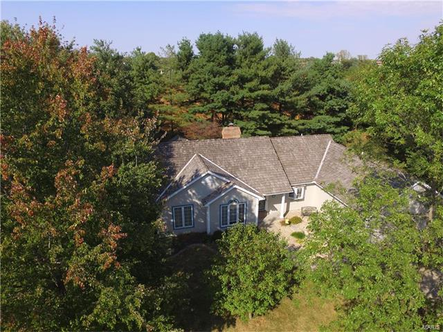 12 Country Maples Drive, Glen Carbon, IL 62034 (#17080064) :: Fusion Realty, LLC