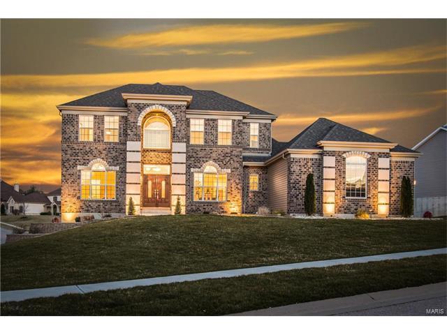 41 Coalter Ridge Court, Dardenne Prairie, MO 63368 (#17080779) :: The Kathy Helbig Group