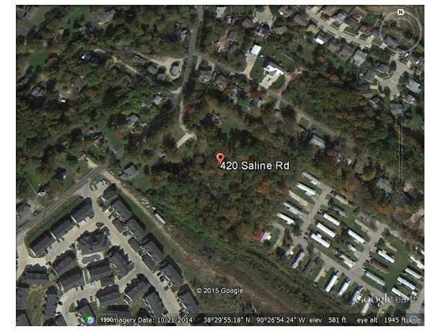 420 Saline Road, Fenton, MO 63026 (#17081361) :: RE/MAX Vision
