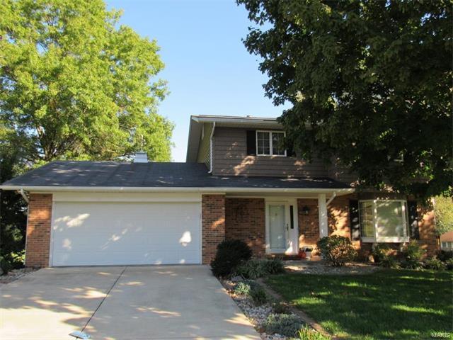 6 Sandwedge Drive, Belleville, IL 62220 (#17082302) :: Fusion Realty, LLC