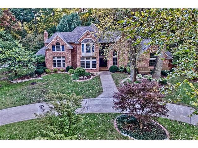9 Dean Park Place, Glen Carbon, IL 62034 (#17082334) :: Fusion Realty, LLC