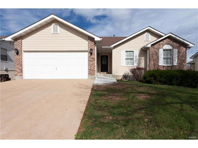 1543 Robert Thompson Drive, Festus, MO 63028 (#17084867) :: Clarity Street Realty
