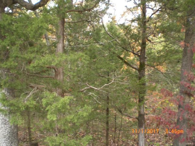 5 Acres On Hillside Road, De Soto, MO 63020 (#17086789) :: St. Louis Finest Homes Realty Group