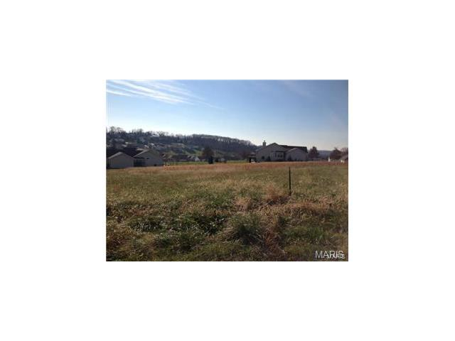 112 Bridgewater Crossing, Villa Ridge, MO 63089 (#17090396) :: Walker Real Estate Team